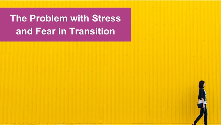 The problem with stress and fear in transition