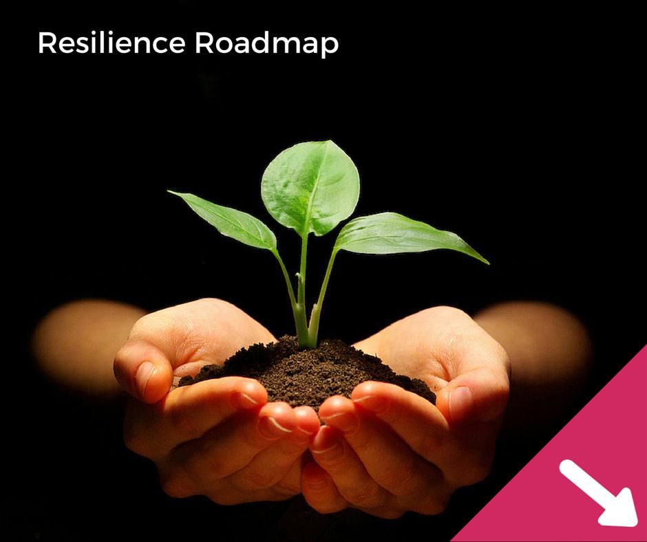 Resilience Roadmap 1