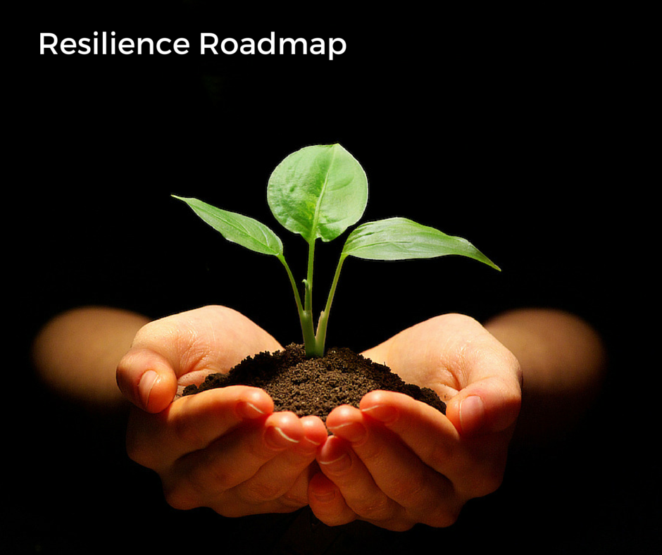 Resilience Roadmap 2